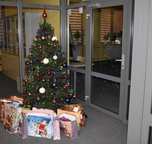 Zdjęcie przedstawia choinkę w bibliotece. Wokół choinki świąteczne prezenty.